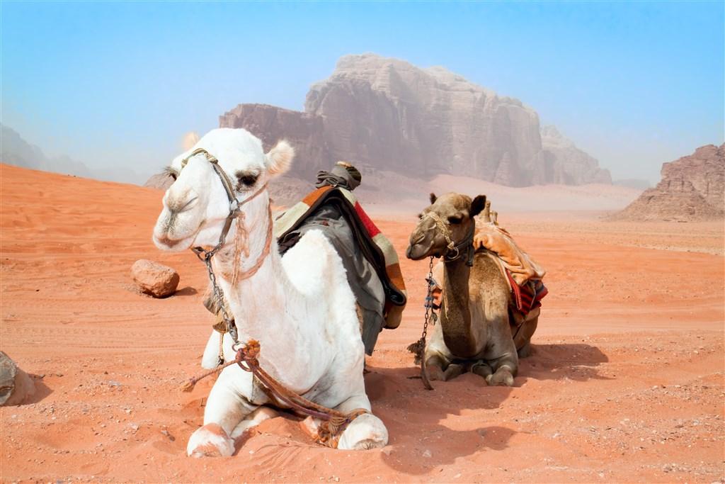 Jordánsko - krajina čarovnej histórie - 5 Popup navigation