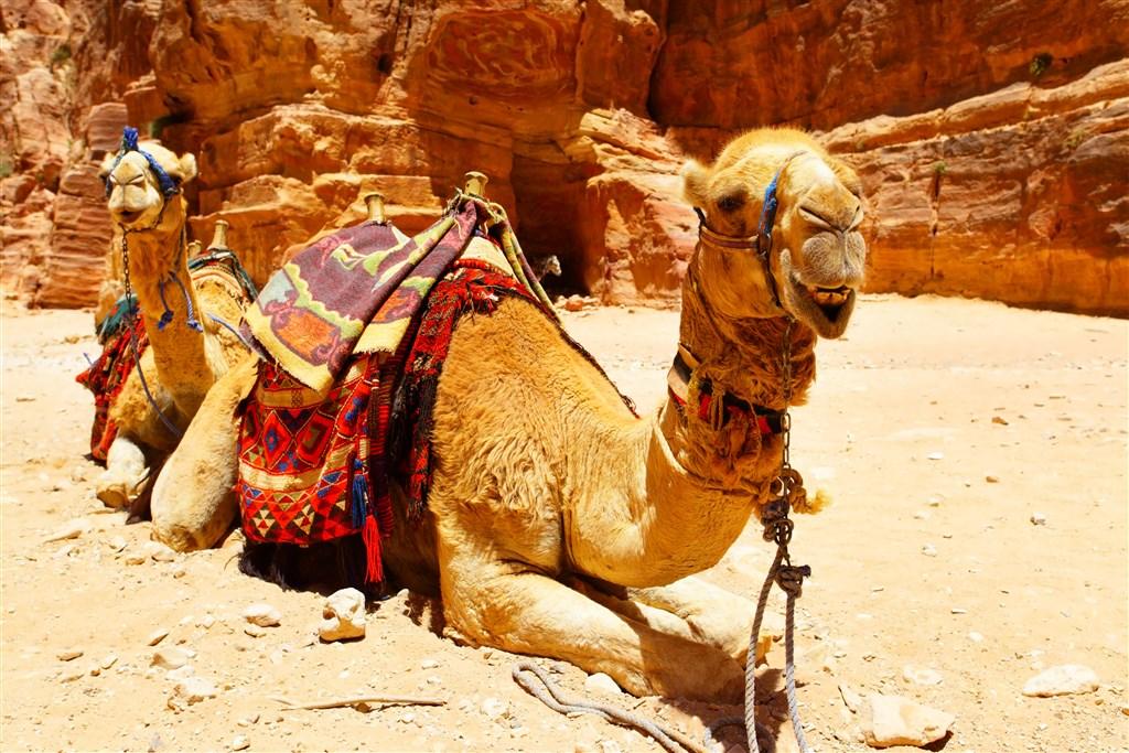 Jordánsko - krajina čarovnej histórie - 17 Popup navigation